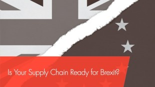 1486560737212_supply-chain-ready-for-brexit